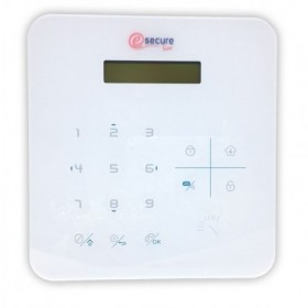 télécommandes pour centrale d'alarme (3419)