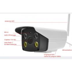 Caméra de surveillance avec vision nocturne couleur full hd Vstarcam