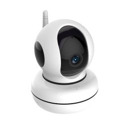 Caméra boule pour surveillance intérieure