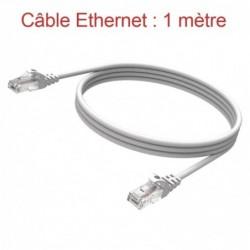 Cordon Ethernet Catégorie 5 PVC Gris Longueur 1m (771)