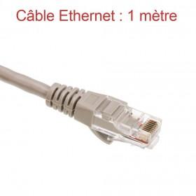 Cordon Ethernet Catégorie 5 PVC Gris Longueur 1m (773)