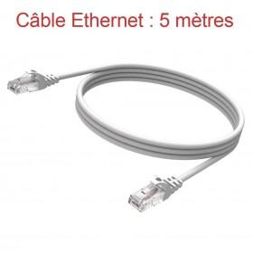 Cordon Ethernet Catégorie 5 PVC Gris Longueur 5m (777)